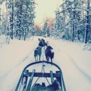 Schaatsen-Luleå---Foto's-Annie-5